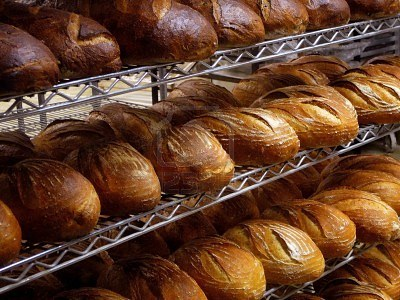 shelves of fresh baked loaves of artisan bread